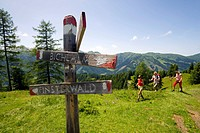 Three hikers arriving sign post, Bichlalm 1731 m, Grossarl Valley, Salzburg, Austria