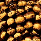 Roasted chestnuts, South Tyrol, Italy, Europe