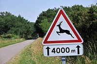 Warning sign / Traffic sign for deer crossing the road, La Brenne, France