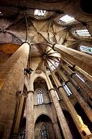 Santa Maria del Mar Church, Barcelona