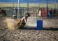 Rodeo, Ruby`s Inn, Bryce, Utah, USA