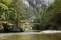 Bridge over the Schwarza River in Hoellental, Hell's Valley in Reichenau an der Rax, Lower Austria, Austria, Europe