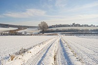 Path through a field with tractor tracks in winter, St. Veit, Lower Austria, Austria, Europe