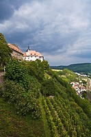 Vinyards of Dorndorf, Germany  Unstrut-Saale, one of the northern-most wine producing regions in Europe