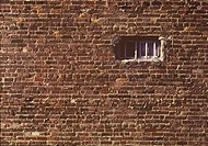 brick-wall-window