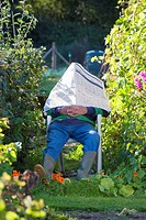 Man napping under newspaper in garden