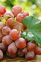 Grapes in natural background