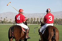 Polo Players holding polo sticks mounted on polo ponies back view