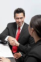 Businessman and Businesswoman Shaking Hands at Table
