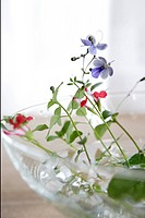 Cherry sage and buddleia flowers in a glass bowl