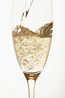 Champagne being poured into glass close up in studio (thumbnail)