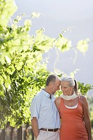 Portrait of mature couple at the vineyard