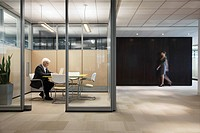 Businessman working in glass conference room
