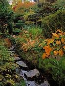 Tully Japanese Gardens, Co Kildare, Ireland, Japanese garden