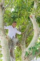 Low angle view of a boy climbing a tree