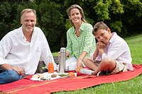 Family enjoying picnic in a park (thumbnail)