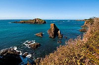 The coast of Mendocino, California, USA