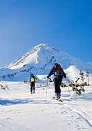 Mount Hood, Mount Hood Wilderness, Oregon, USA, Cross_country skiing