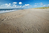 Empty Beach, Texel Island, Holland