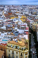 Santa Cruz quarter, as seen fron Giralda tower  Seville, Andalusia, Spain