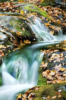 Autumn Waterfall with mossy rocks