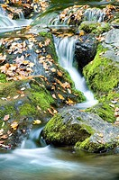 Autumn waterfall and mossy rocks, Great Smoky Mountains National Park