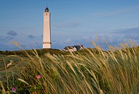 Blavand, Denmark, Jutland, lighthouse, grass, coast, houses, homes,