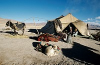 Family tent in the countryside of Tibet  Tibet is known as the Roof of the World, with most of the area above 3,000 feet  Under firm Chinese control s...