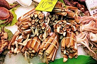 Razor shells for sale in La Boqueria market, Barcelona. Catalonia, Spain
