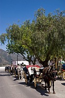 Tourist Horse and Carriages, in Mijas, Costa del So,l Spain
