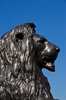 Trafalgar Square, Lion, Statue, London, UK