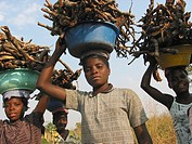 Closeup of girls carrying firewood in Angola  Feeding centres and other humanitarian aid were organised in Angola after widescale malnutrition during ...