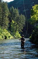 Man fly fishing in a lake