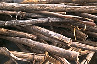 Close_up of a pile of firewood