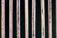 Close_up of a fence of metal rods
