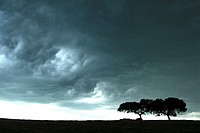 Storm in Monfrague Natural Park. Caceres province. Extremadura. Spain