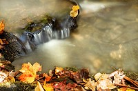 Autumn waterfall with lots of copy space