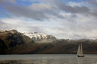 In the Andes of Chilean Patagonia. South_America.