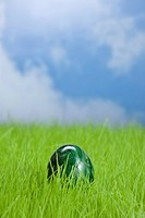 Colored Easter Egg in green grass