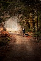 WOMAN HIKER WITH DOG ON FOREST TRAIL