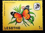 Arfican monarch Danaus chrysippus, postage stamp, Lesotho, 1984