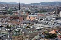 Vienna roof landscape