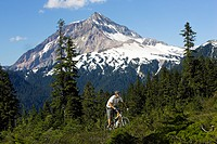 Mountain bike , Whistler, BC, Canada