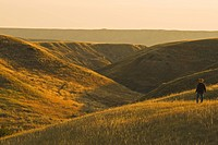 a man looks out over coulees along the South Saskatchewan River near Sandy Point Park north of Medicine Hat, Alberta, Canada.
