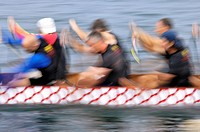 Men paddlers in a Dragon boat racing competition. Toronto, Ontario, Canada.