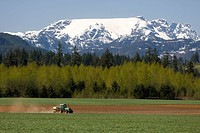A tractor spreads fertilizer before planting corn under the watchful eye of the Comox glacier. Courtenay, The Comox Valley, Vancouver Island, British ...