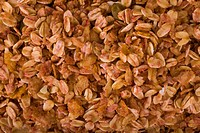 Close_up of mixed flakes
