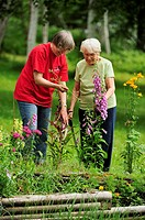 Mrs  Lil Punkari age 86 discussing gardening issues with daughter Brenda