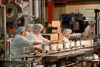 Pharmaceutical workers on an assembly line.