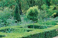 View of formal garden